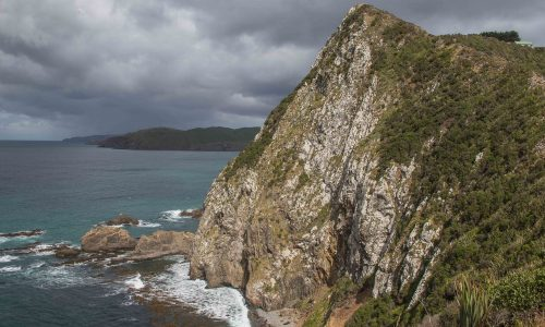 4 - Nugget Point (5)