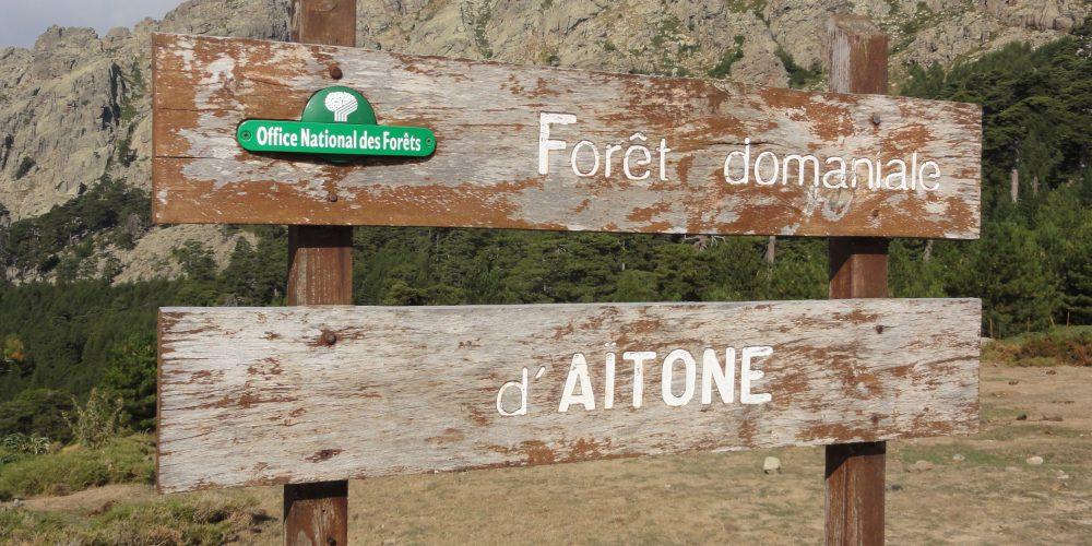 Forêt et Cascade d'Aïtone